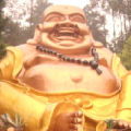 柳州飘客一族的头像