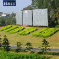 中国珍珠城的头像
