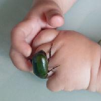 西江水花的头像
