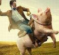 骑猪南下的头像